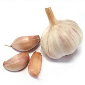 garlic-naadu510_1