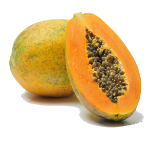 papaya copy